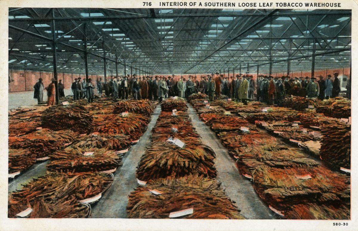 History Harvest preserves regional history of tobacco farming