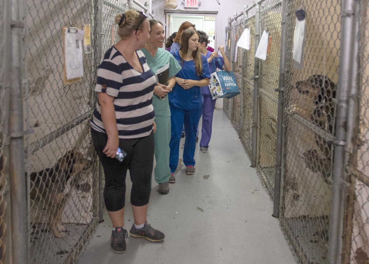 BHC 06102019 Shelter Training 05