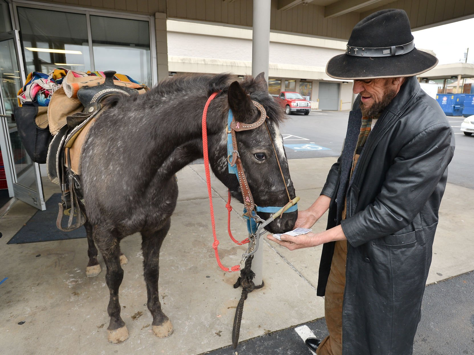 Horse Rider A Unique Sight On Bristol Streets Latest Headlines Heraldcourier Com