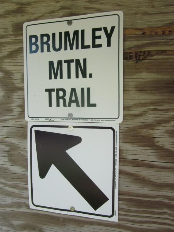 Brumley Trail 6