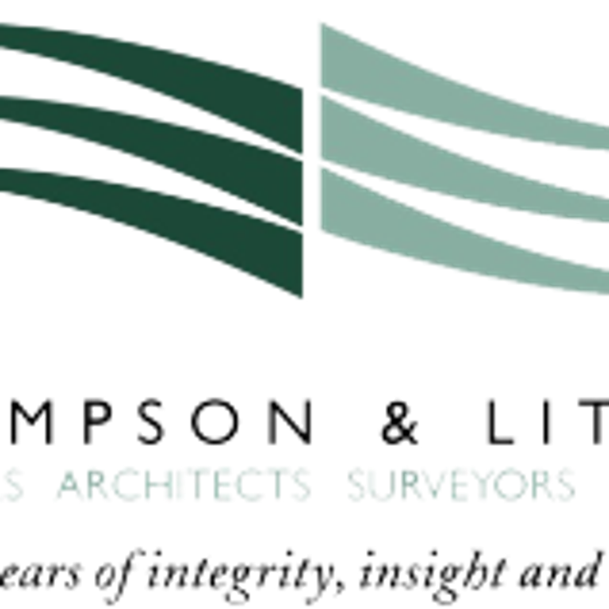 Thompson & Litton expands project focus, leadership team