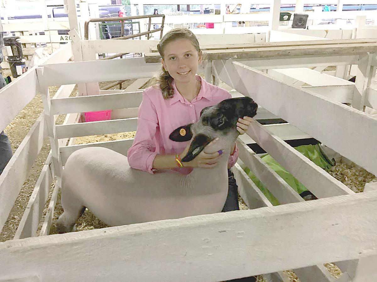 Hard work pays off in Fayette County Fair agricultural shows