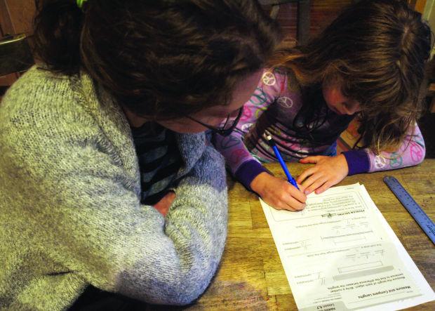 Afterschool homework help classified ad