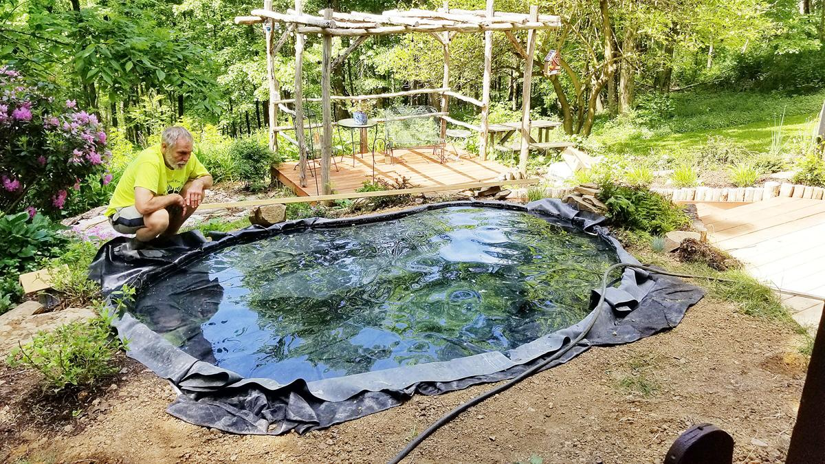 Pond Fern Oxygenator Pond Plant koi Proof MUCH MORE than other sellers.