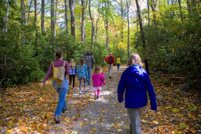 Laurelville family fun walk