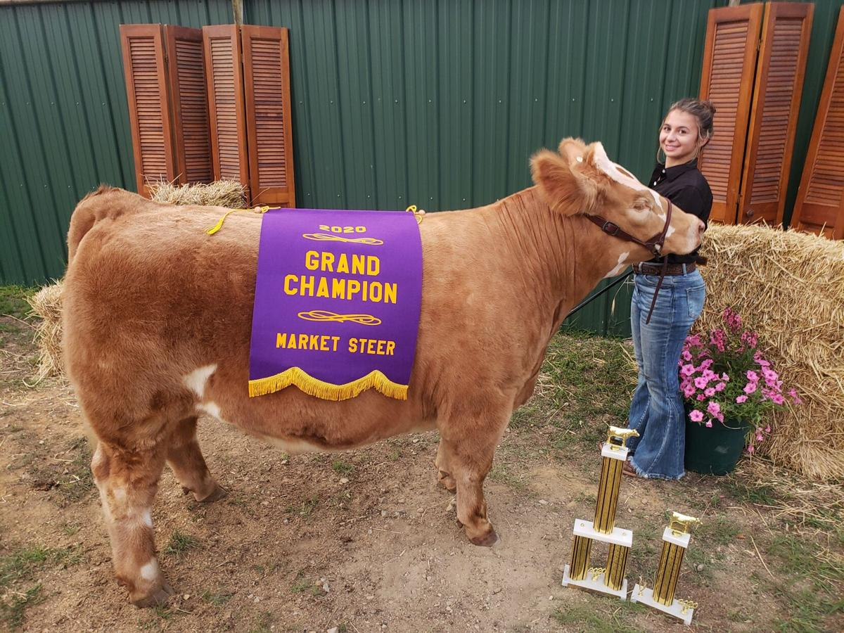 Overall Grand Champion Steer