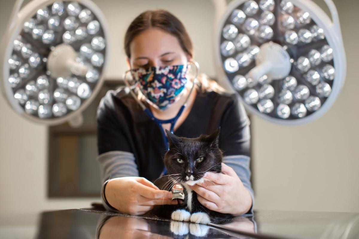 Cal U opens campus vet tech lab