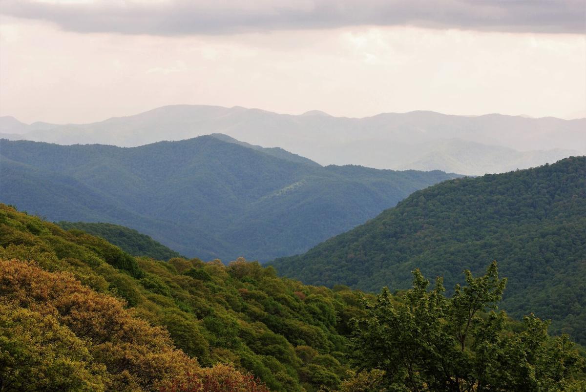 Smoky Mountan vista