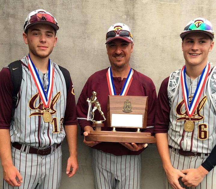 Trojans highlight Herald-Standard All-Area Baseball Team