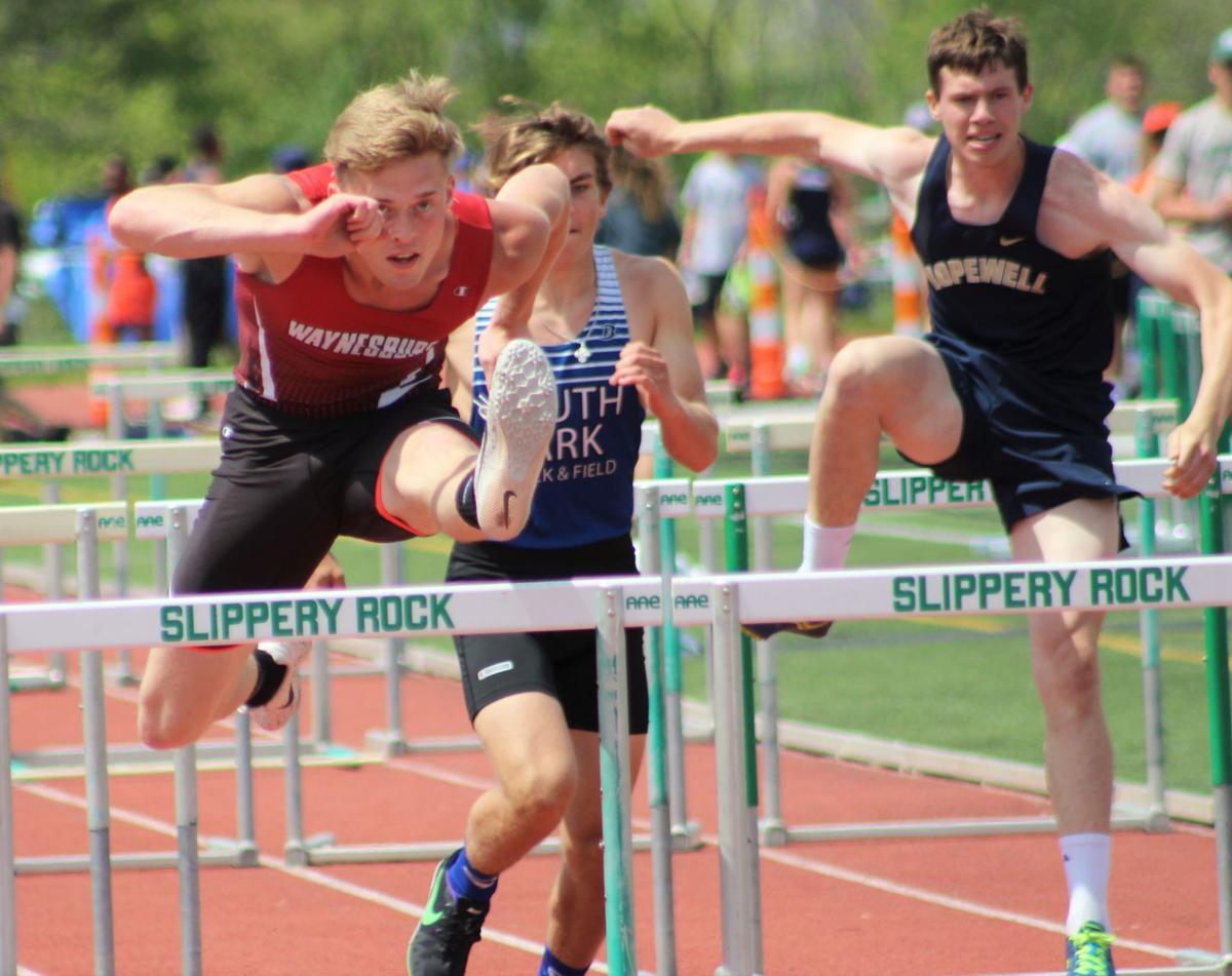 Layton wins gold in 110 high hurdles