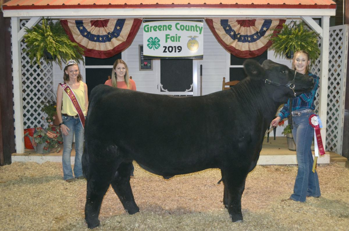Market Steer Reserve Grand Champion
