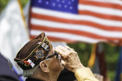 How Memorial Day and Veterans Day differ from each other