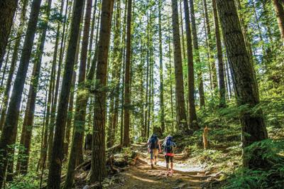Must-haves for fun, safe hiking trips