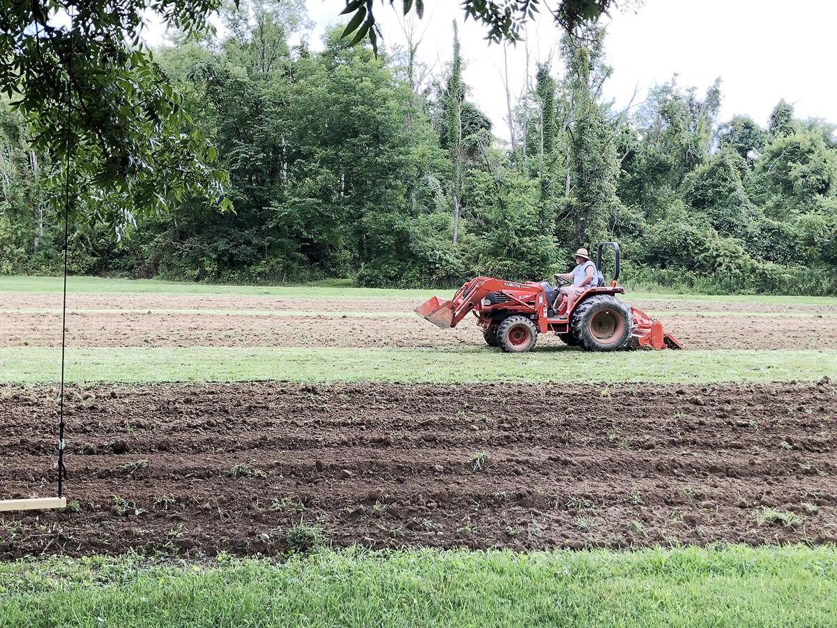 Food plots ready for another hunting season