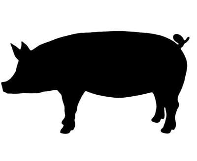 State's pork producers pledge efforts during pandemic