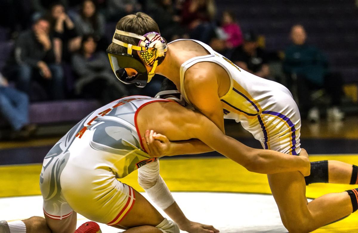 Wrestling | Dawgs sending 7 to regional tournament