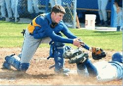 TIGERS CLAW ACK FOR SPLIT