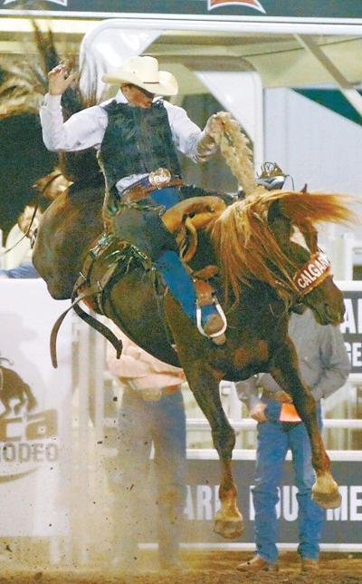 Saddle up, dig in for rodeo's 'Classic'