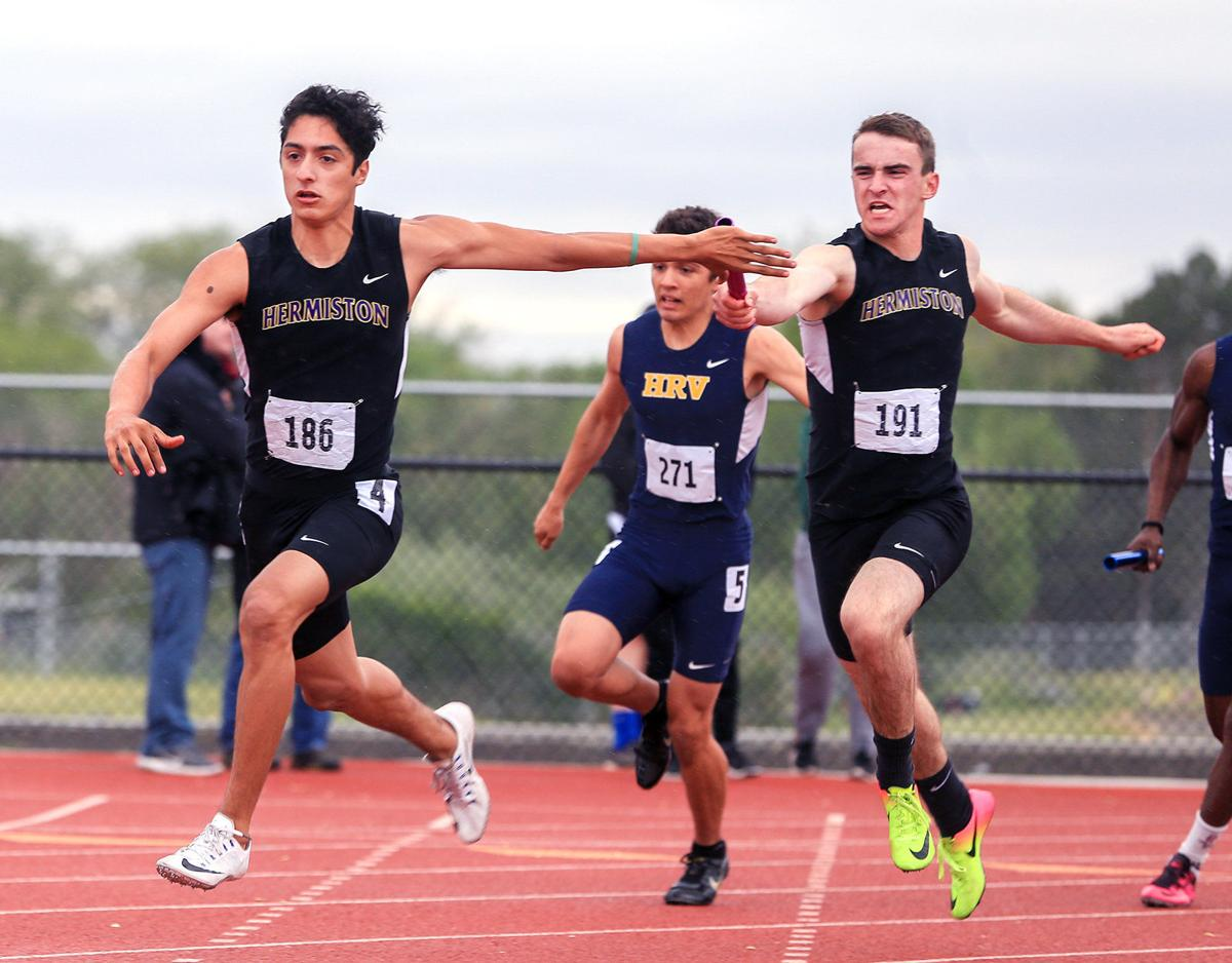 Top dogs in district track