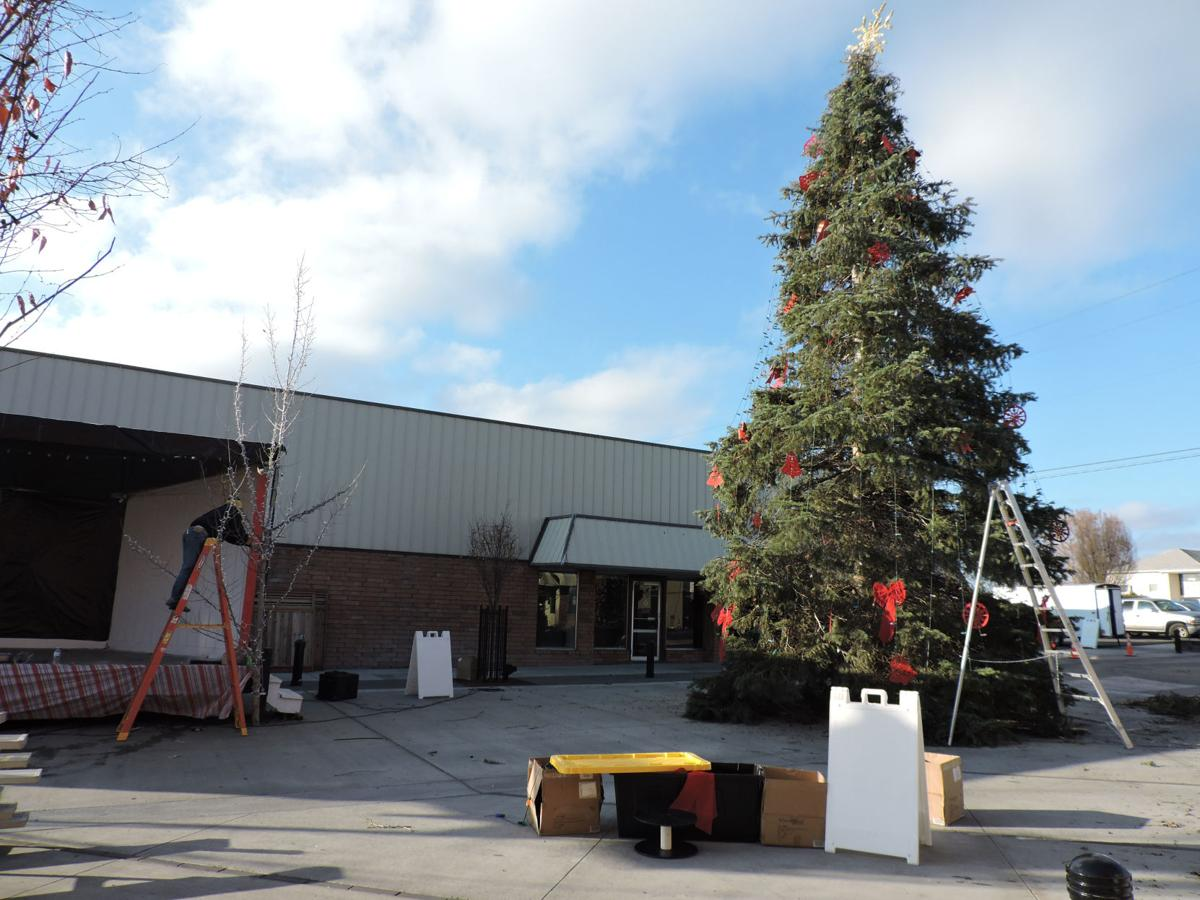 City prepares for tree-lighting