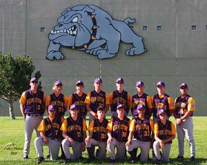 Babe Ruth teams head to state