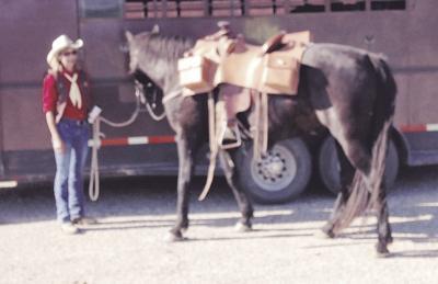 190614_hwcommunity_pony
