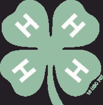4-H graphic