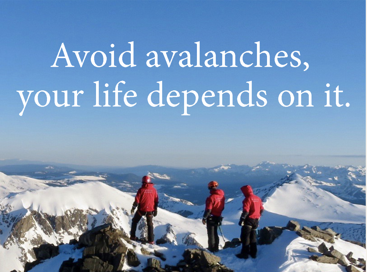 Avoid Availances -- Your Life Depends On It