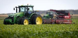 Farmers-kick-off-fall-sugar-beet-harvest