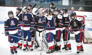 Ice-Dawgs-president's-petition-seeks-two-tier-hockey-system