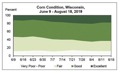 Corn Condition
