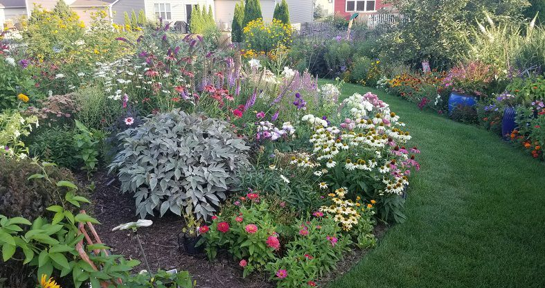 August 2021 Garden of the Month