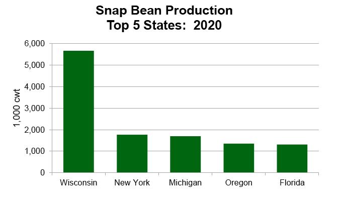 Wisconsin tops in snap beans in 2020