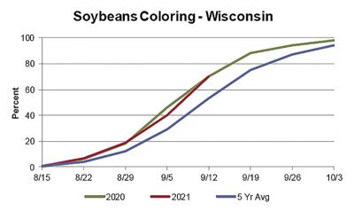 Soybeans Coloring