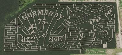 Schuster's Corn Maze