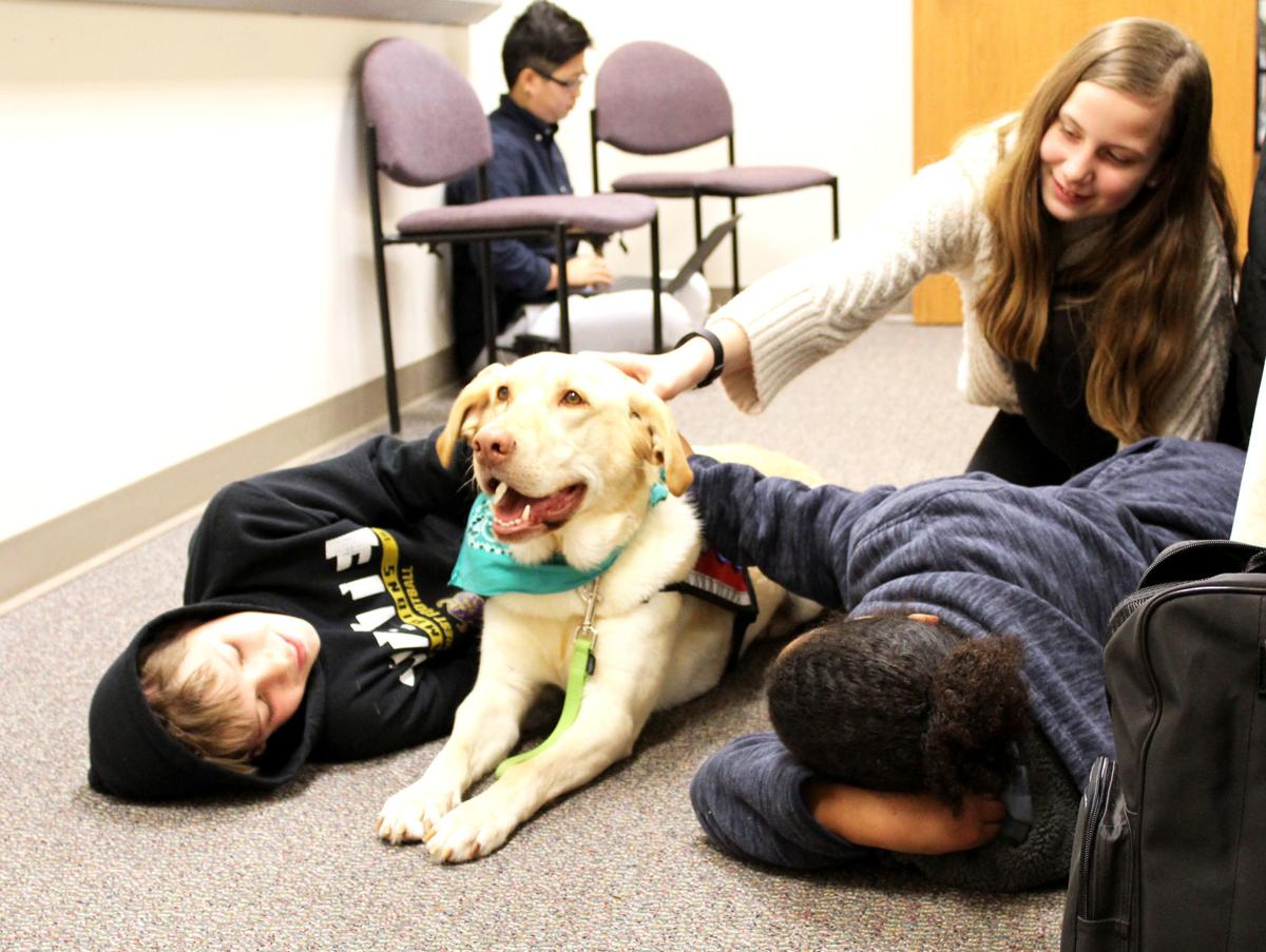 DAMS students and therapy dogs