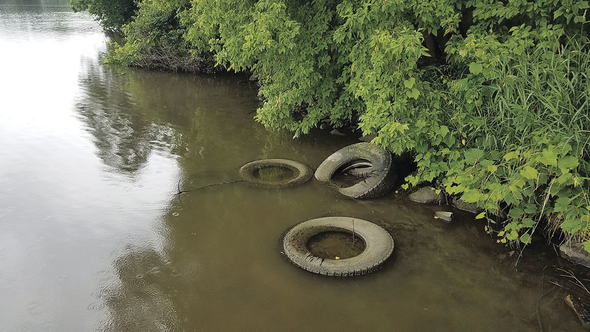 Tires in the wild