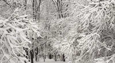 City of Sun Prairie declares snow emergency