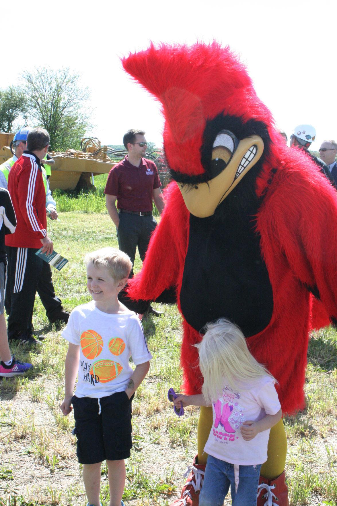 Curt the Cardinal