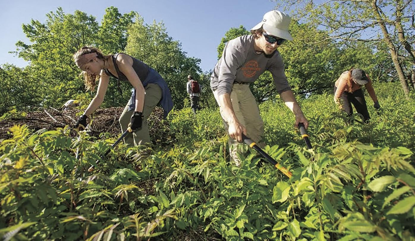 Prairie Partners landscaping
