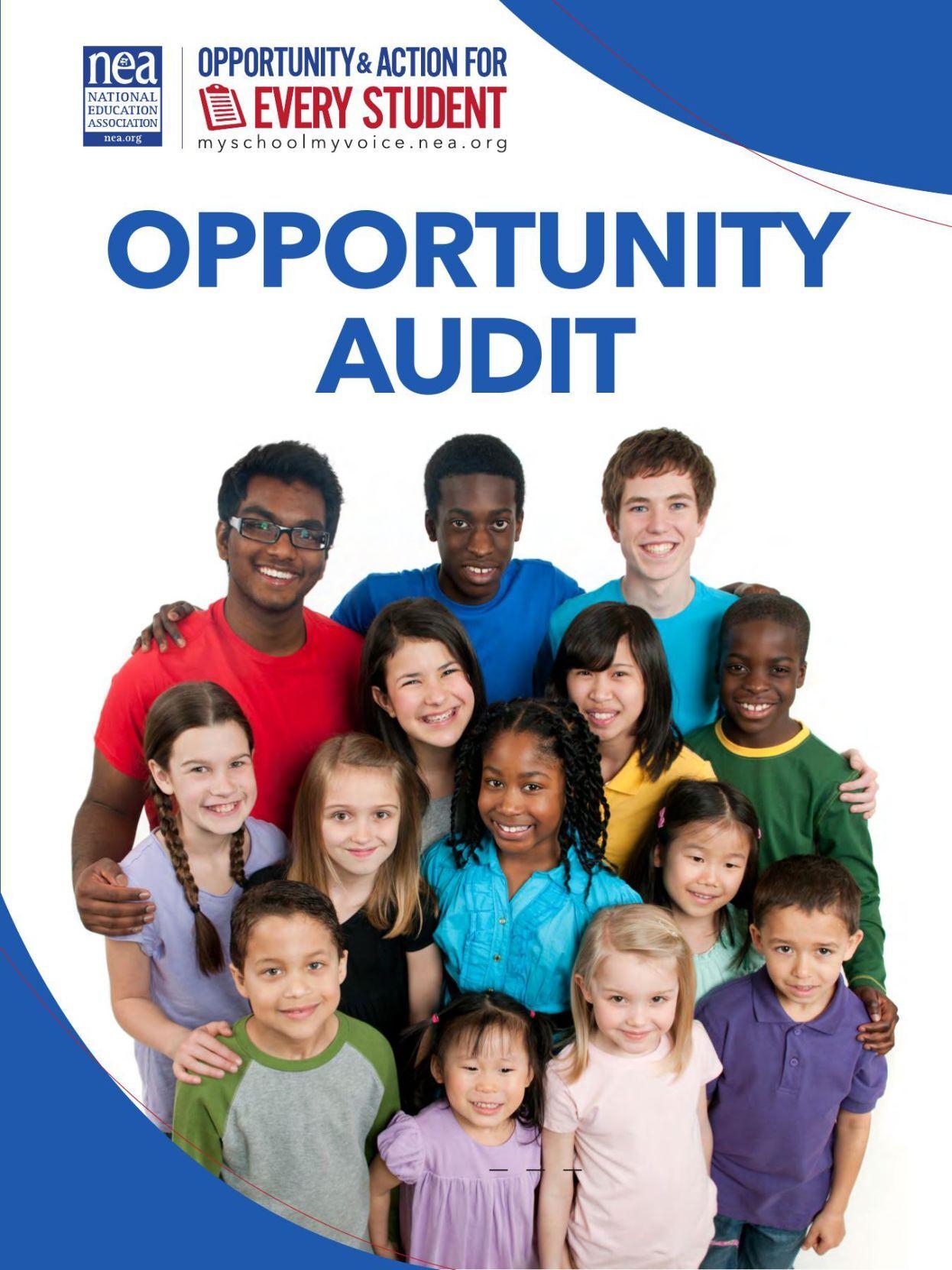 Opportunity Audit