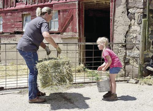 Farmers, save your backs
