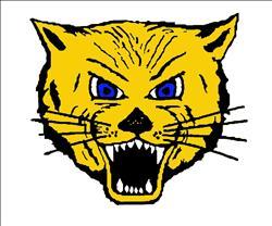 L-Cats top Pumas