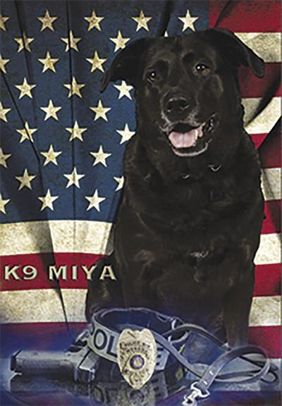 Monona Police K-9 Miya celebrates ten years of service