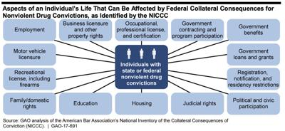 ABA Collateral Consequences Infographic