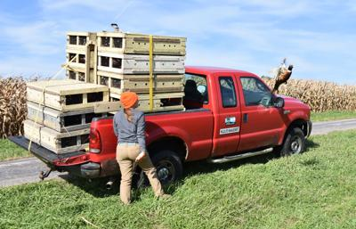 Many state hunting seasons underway, local favorite set to open Oct. 17