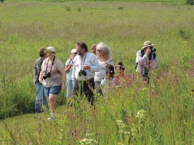 Join Guided Bird Walk at Korth Park, Lake Mills | Community