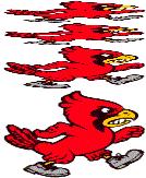 Sun Prairie Cardinal