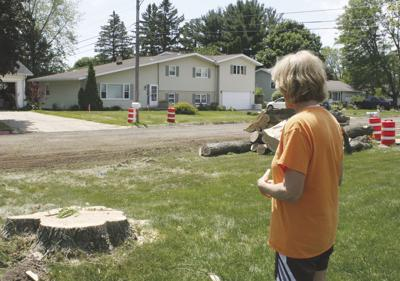Trees cut down to make way for sidewalks