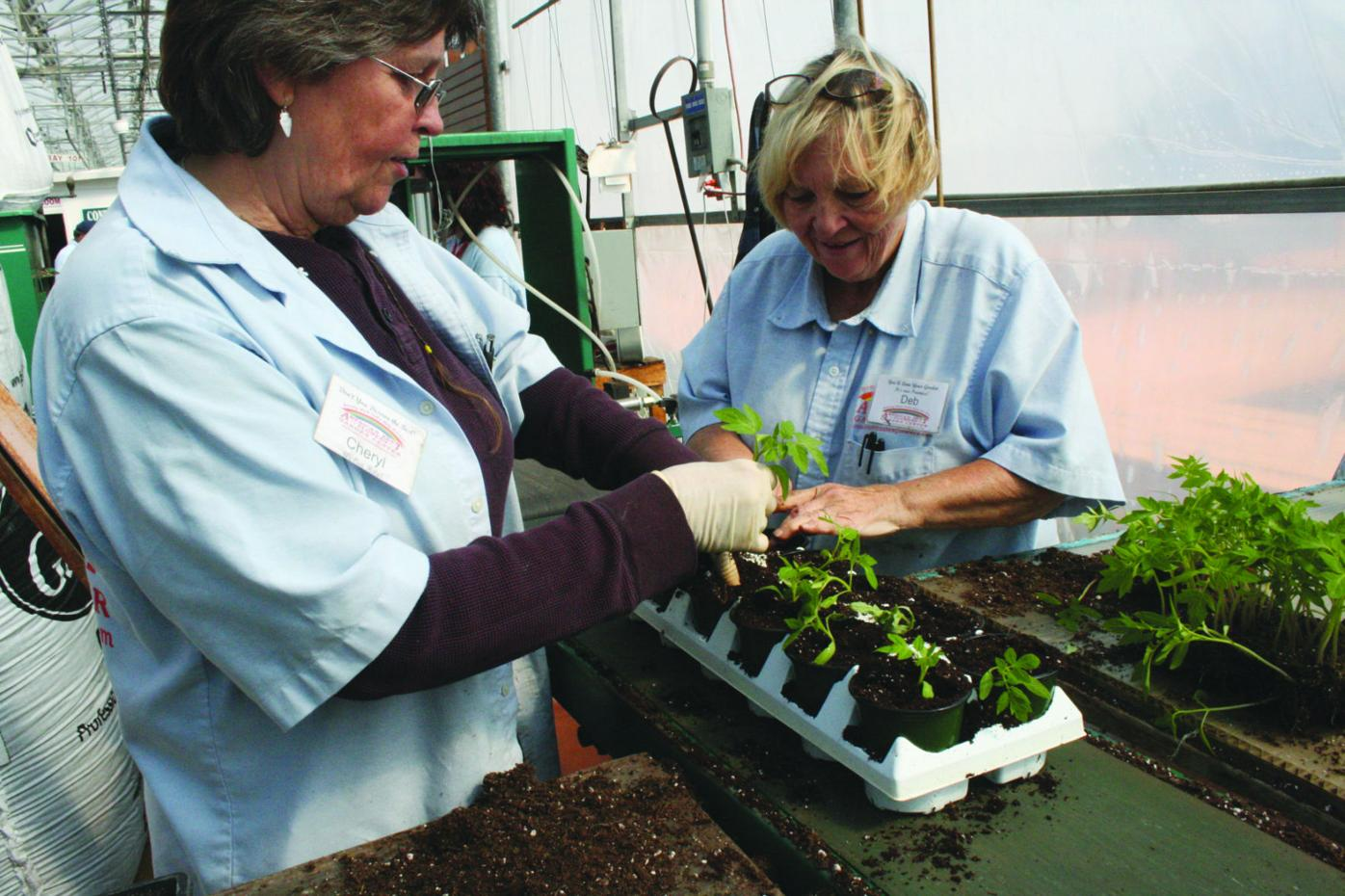 A love for flowers keeps blooming for Sun Prairie grads